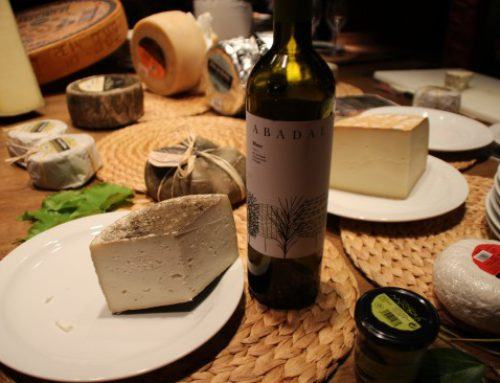 Abadal Wines & Montbrú cheeses, a perfect pairing