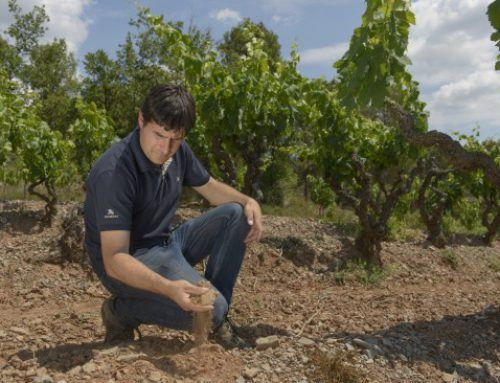 Miquel Palau, an oeneologist at the Abadal winery receives a prestigious award from a top catalan wine guide in recognition of his innovative work