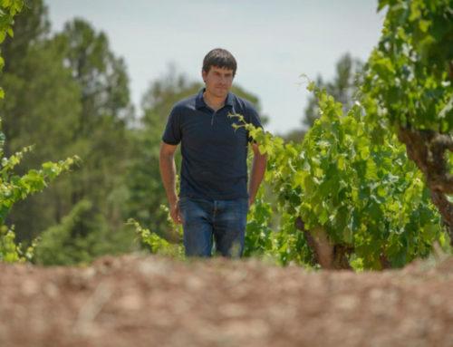 Entrevista a Miquel Palau, enòleg d'Abadal