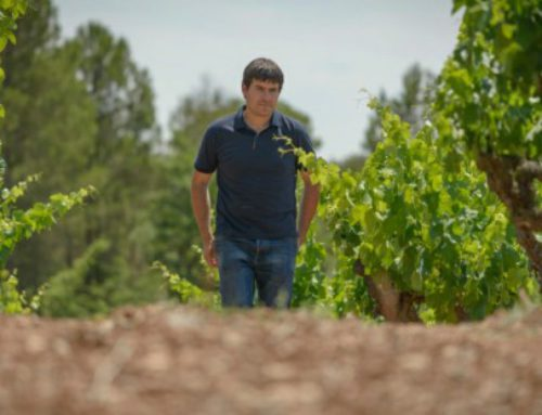 Entrevista a Miquel Palau, enólogo de Abadal