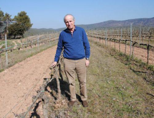 """Valentí Roqueta: """"La cultura del vi ha d'entrar a les escoles"""""""