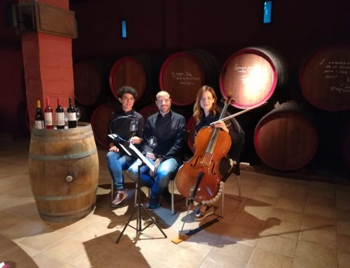 Wine and cello pairing at the winery