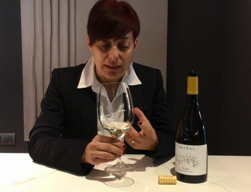Abadal has launched a series of video capsules with sommeliers and communicator experts from the world of wine