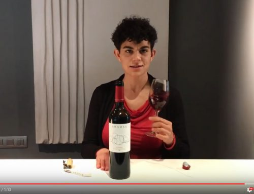 Abadal Crianza, a wine that talks about the landscape of Abadal – by the sommelier Clara Antúnez