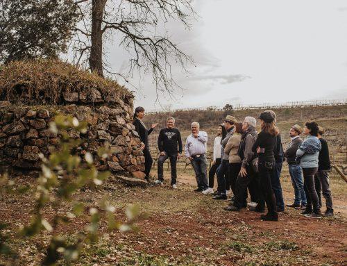 Abadal renova el seu distintiu d'enoturisme sostenible i de qualitat