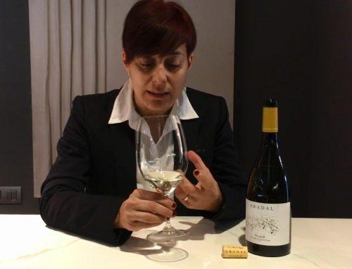 Abadal inicia un cicle de vídeo càpsules amb sommeliers i comunicadors del món del vi